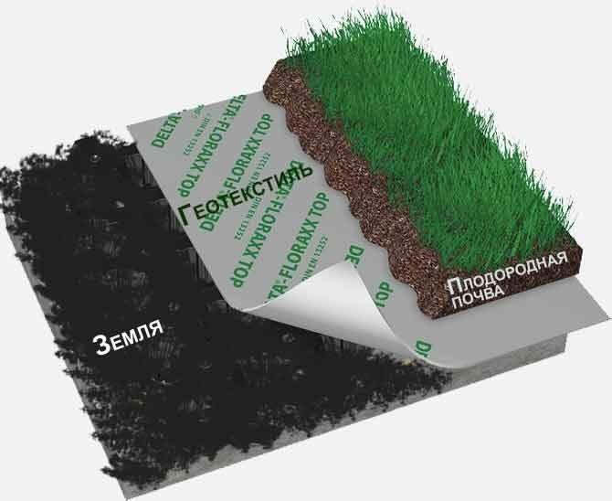Рулонный газон технология укладки своими руками